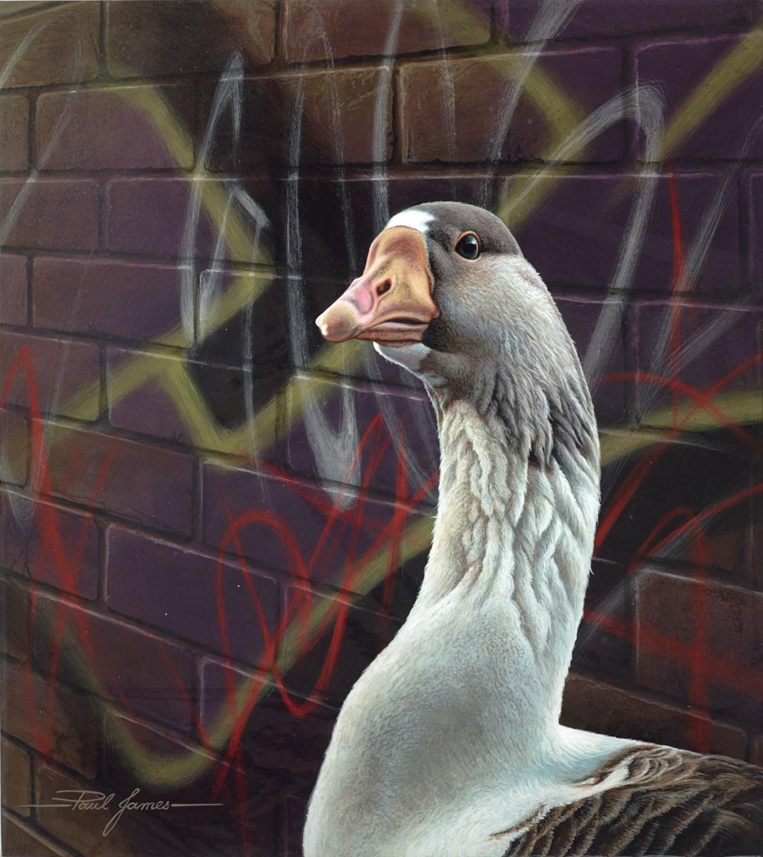 Goose Alley I